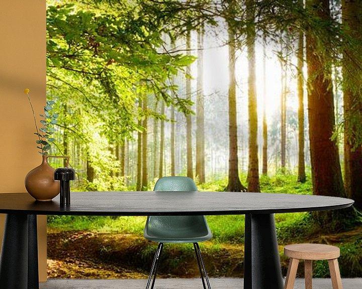 Beispiel fototapete: Idyllischer Wald bei Sonnenaufgang von Günter Albers