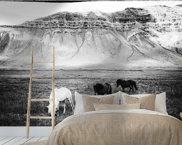 Impression: Hestar landslag sur Islandpferde  | IJslandse paarden | Icelandic horses