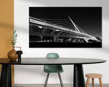 Citer brug nabij Hoofddorp, Nederland van Henk Meijer Photography