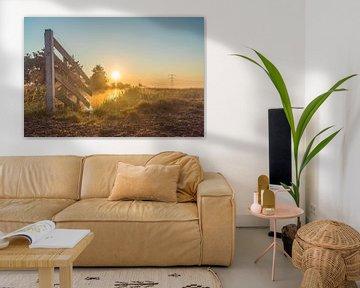 Sonnenaufgang zwischen den Wiesen von Rossum-Fotografie