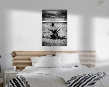 Zand en Stronken van Joram Janssen