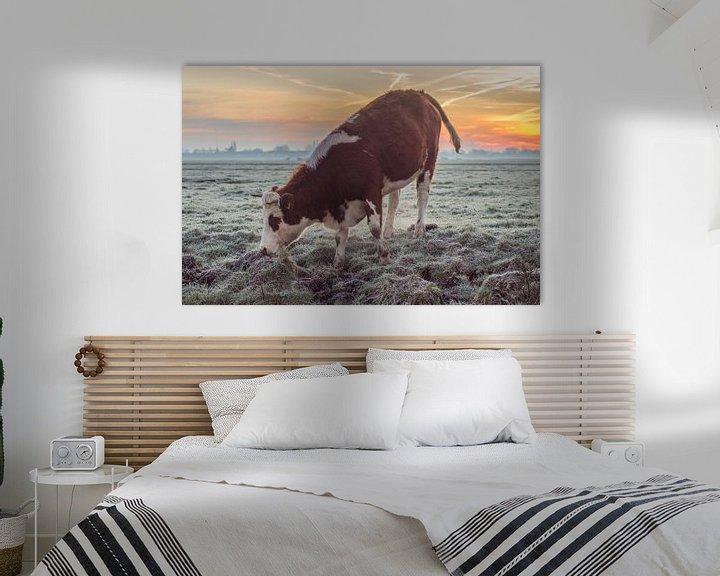 Sfeerimpressie: Koe in weiland tijdens Zonsopkomst van Rossum-Fotografie