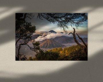 Mount Bromo van Claudio Duarte