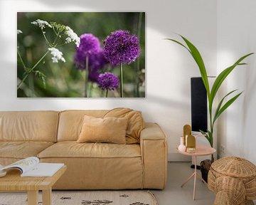 Ajuin paarse bloem