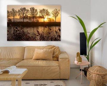 lever du soleil le long de l'Escaut à Gand - Belgique