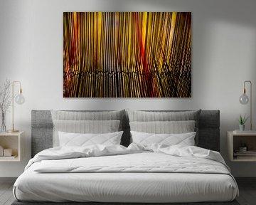 String van David Mager