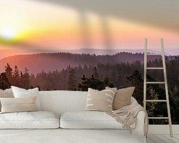 Sonnenaufgang am Schliffkopf im Schwarzwald von Werner Dieterich