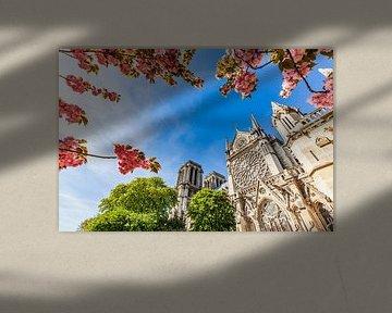Kathedrale Notre-Dame in Paris von Werner Dieterich
