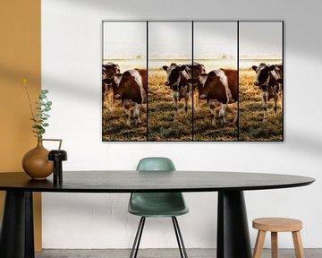 Koeien van Alied Kreijkes-van De Belt