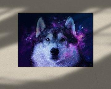 Galaxy Siberian Husky von Lemo Boy