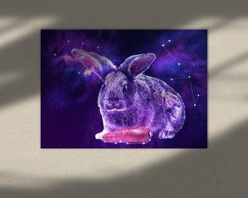 Galaxy Rabbit with Carrot von Lemo Boy