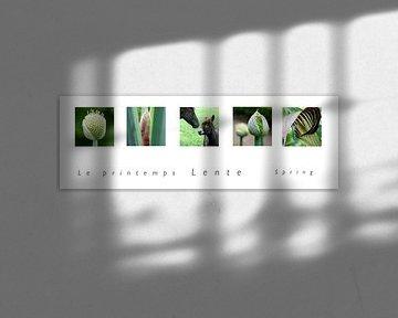 panorama lente van Karin Hendriks Fotografie
