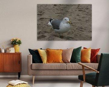 Angry Bird van Toekie -Art