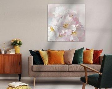 Cherry blossom van Violetta Honkisz