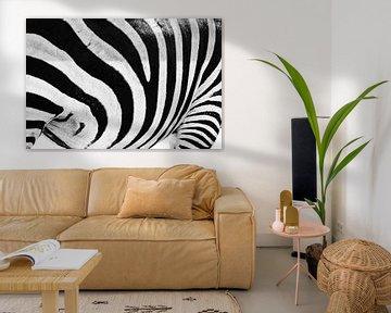 Großaufnahme von Zebrastreifen mit einem Schwarzweiss-Muster von Sjoerd van der Wal