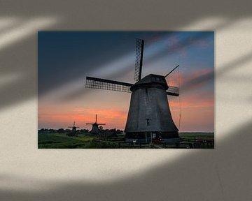 De molens van Schermerhorn van jeroen akkerman