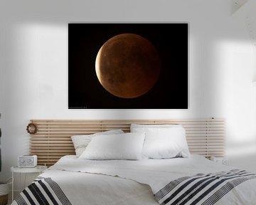 De rode maan komt tot een eind von jeroen akkerman