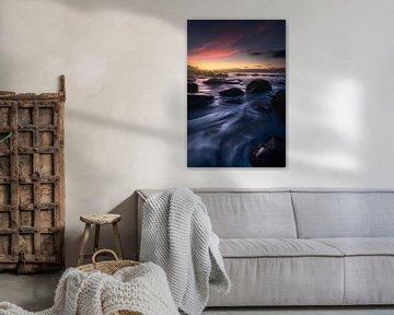 Shoreleave van Daniel Laan