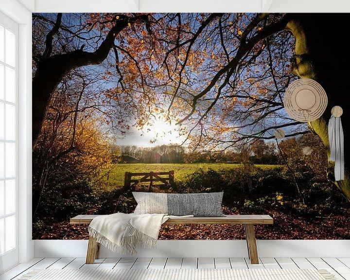 Impression: L'automne tend vers le soleil sur Sjoerd Mouissie