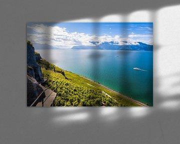 Wijngaard Lavaux aan het meer van Genève van Werner Dieterich