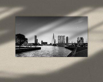 Skyline van Rotterdam von Danny den Breejen