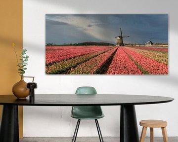 Windmühle mit rosa Tulpen unter einem bewölkten Himmel von iPics Photography