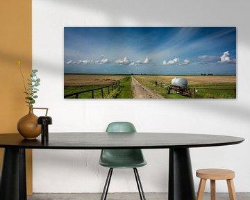 Noordpolder, Groningen van Bo Scheeringa Photography