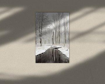Winterstimmung im Auwald / Bruchwald der Ilvericher Altrheinschlinge bei Meerbusch vor den Toren Düs von wunderbare Erde