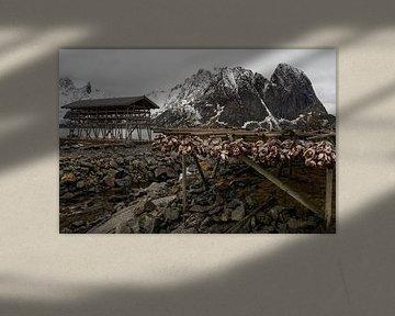 Nusfjord, Norway Lofoten van Ab Wubben