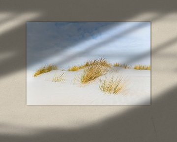 Duinen op het Waddeneiland Schiermonnikoog tijdens een mooie winterdag van Sjoerd van der Wal