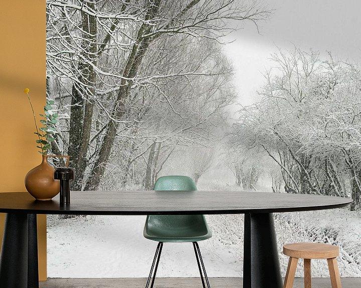 Beispiel fototapete: Wintereinbruch am Niederrhein, Schneefall in der Ilvericher Altrheinschlinge, Blick an Wanderweg neb von wunderbare Erde