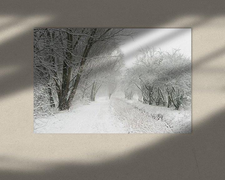 Beispiel: Wintereinbruch am Niederrhein, Schneefall in der Ilvericher Altrheinschlinge, Blick an Wanderweg neb von wunderbare Erde
