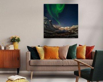 Aurora over Bergsbotn fjord among snowy mountains, Senja, Norway van Wojciech Kruczynski