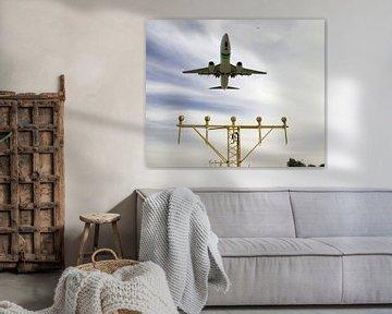 Das Transavia-Flugzeug landet am Flughafen Rotterdam Den Haag über einer hellen Leiste der Startbahn