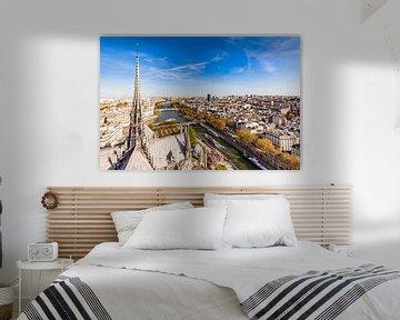 Uitzicht vanaf de kathedraal Notre-Dame over Parijs van Werner Dieterich