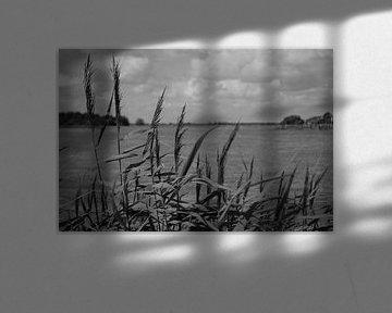 Texels landschap in zwart/wit von Henk van der Sloot