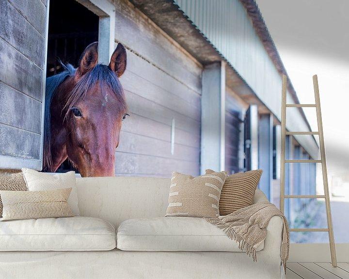 Sfeerimpressie behang: paard kijkt naar buiten van Marloes Hoekema