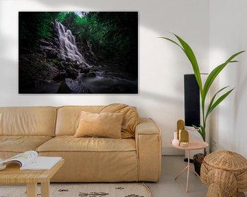 A waterfall in Bali van Claudio Duarte