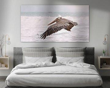 Pelikan fliegt über das Meer von Anouschka Hendriks