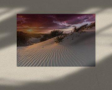 Zonsondergang in de duinen van het Westduinpark nabij Kijkduin Den Haag van Rob Kints