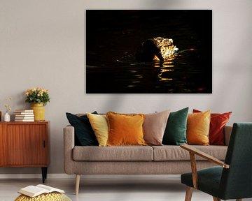 Concept nature :  The swimming duck von Michael Nägele