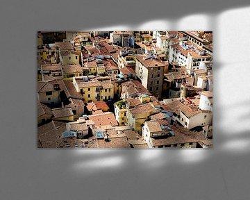 de daken van florence von Hanneke Luit