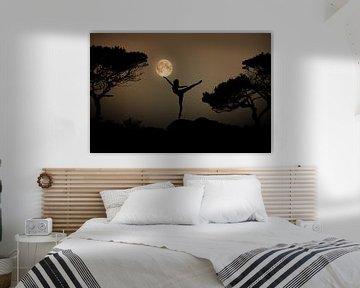 Dansen in het maanlight sur Kevin Plovie