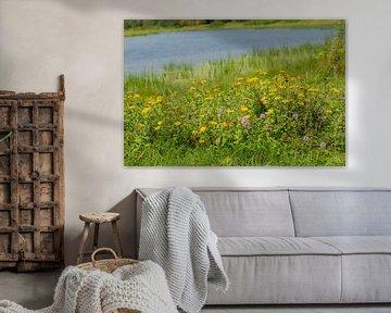 Wilde Blumen auf dem Wasser von Ans Bastiaanssen