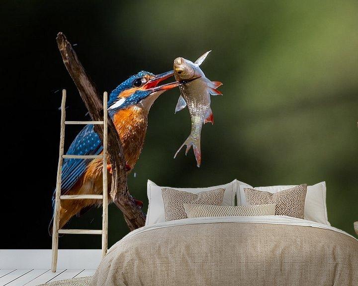 Sfeerimpressie behang: IJsvogel 1 van William Linders