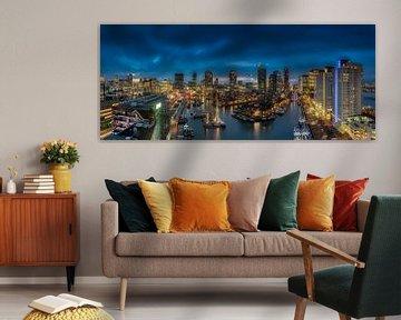 Panorama in Rotterdam van Roy Poots