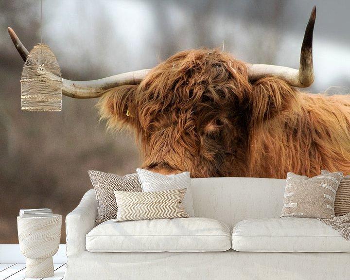 Sfeerimpressie behang: Schotse Hooglander van Sabine Bouwmeester