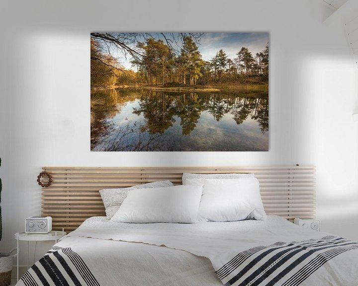 Sfeerimpressie: Birkhoven Bosvijver Reflectie - Amersfoort, Nederland van Thijs van den Broek