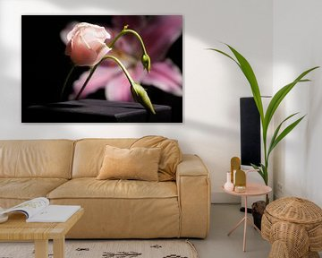 heldere bloem von Shadia Bellafkih