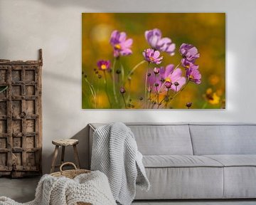 Bloemen in de zomerzon von Ron van Elst